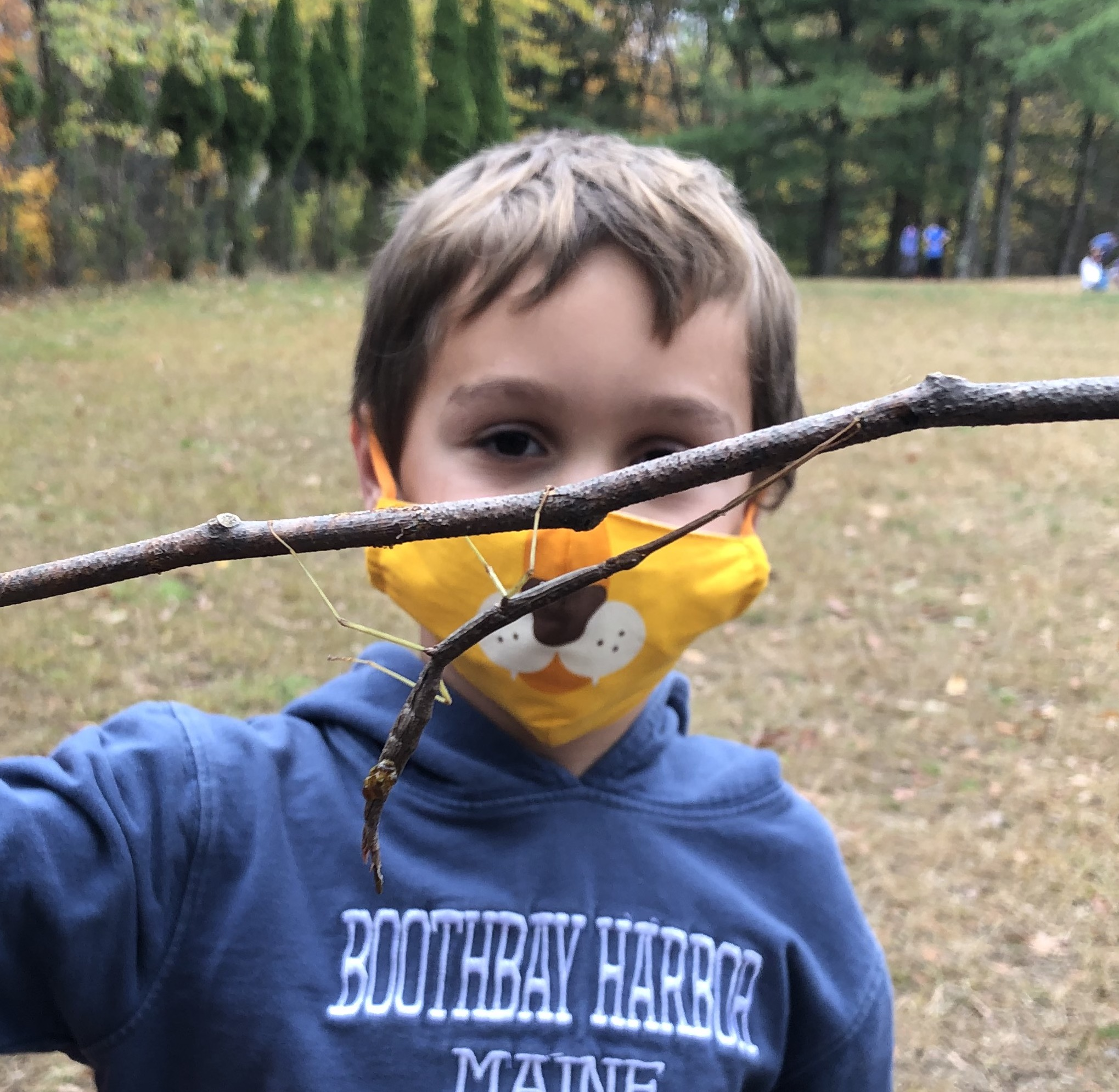 Student with Walking Stick Bug on branch